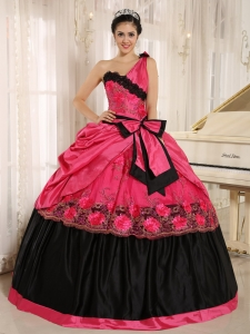 Hot Pink One Shoulder In Arcadia California For 2013 Sweet 16 Dress With Bowknot and Appliques