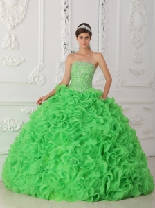 Beautiful Green Sweet 16 Quinceanera Dress Strapless Organza Beading Ball Gown