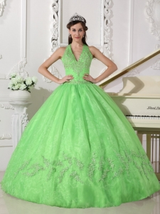 Lovely Spring Green Sweet 16 Dress Halter Taffeta and Organza Appliques Ball Gown